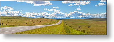 Road Passing Through A Field, Alberta Metal Print by Panoramic Images