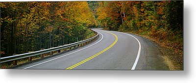Road Passing Through A Forest, Winding Metal Print by Panoramic Images