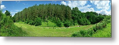 Road Through Forest Metal Print by Panoramic Images