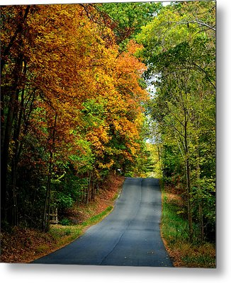 Road To Riches Metal Print by Carlee Ojeda