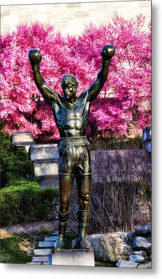 Rocky Among The Cherry Blossoms Metal Print by Bill Cannon