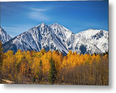 Rocky Mountain Autumn High Metal Print by James BO  Insogna