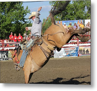 Rodeo Metal Print by Bruce  Morrell