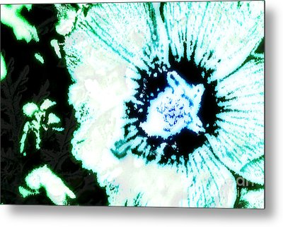 Rosa Sinensis Abstract Metal Print by Floyd Menezes