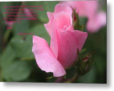 Rose With Scripture Metal Print by Carolyn Ricks