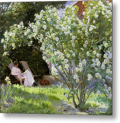 Roses Metal Print by Peder Severin Kroyer