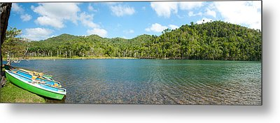 Rowboats In A Pond, Las Terrazas, Pinar Metal Print by Panoramic Images