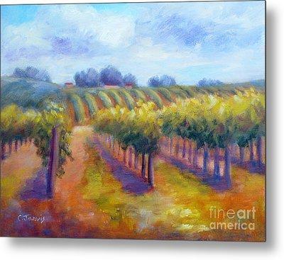 Rows Of Vines Metal Print by Carolyn Jarvis