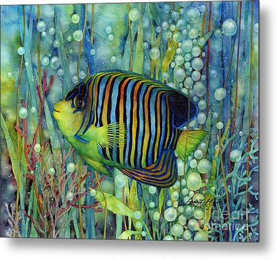 Royal Angelfish Metal Print by Hailey E Herrera
