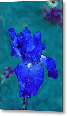 Royal Blue Iris Metal Print by Viktor Savchenko