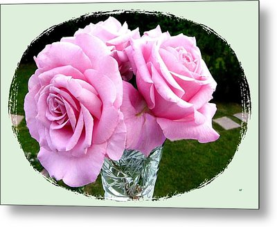 Royal Kate Roses Metal Print by Will Borden