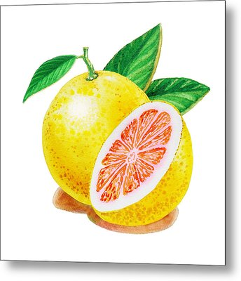 Ruby Red Grapefruit Metal Print by Irina Sztukowski