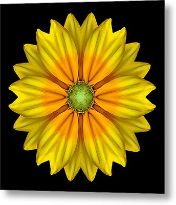 Rudbeckia Prairie Sun I Flower Mandala Metal Print by David J Bookbinder