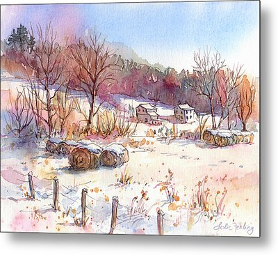 Ruff Creek Winter Metal Print by Leslie Fehling