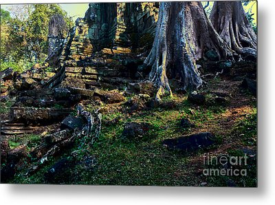 Ruins And Roots Metal Print by Julian Cook