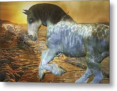 Run With Me Sunrise Metal Print by Betsy C Knapp