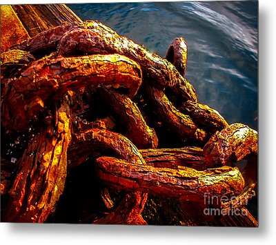 Rust Metal Print by Robert Bales