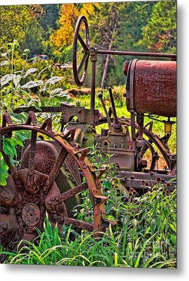 Rusted Metal Print by Colleen Kammerer