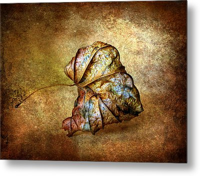 Rustic Metal Print by Jessica Jenney