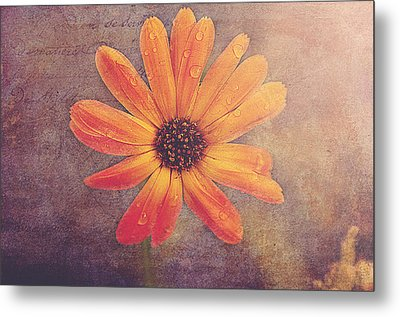 Rusty Metal Print by Faith Simbeck