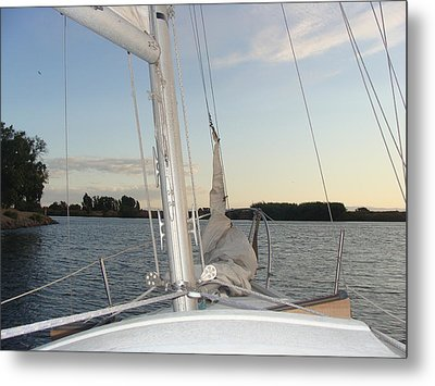 Sailing The Delta Metal Print by Dee  Savage