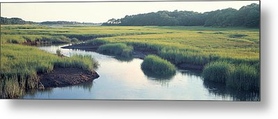Salt Marsh Cape Cod Ma Usa Metal Print by Panoramic Images