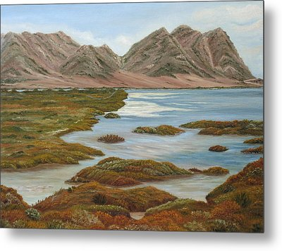 Salt Marsh Metal Print by Angeles M Pomata