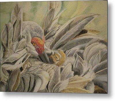 Sandhill Crane And Chick Metal Print by Teresa Smith