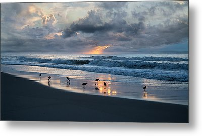 Sandpipers In Paradise Metal Print by Betsy Knapp