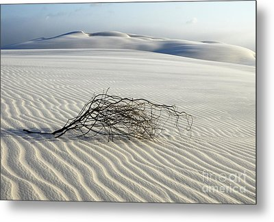 Sands Of Time Brazil Metal Print by Bob Christopher