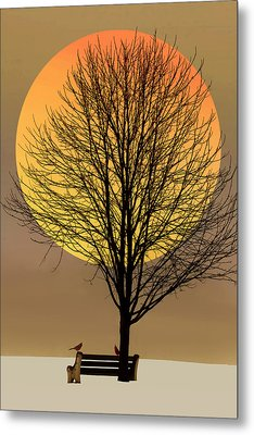 Saturday In The Park Metal Print by Tom York Images