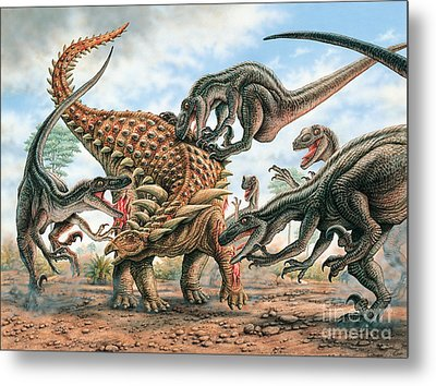 Sauropelta And Utahraptors Metal Print by Phil Wilson