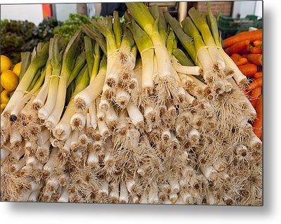 Scallions Metal Print by Art Ferrier