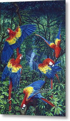 Scarlet Macaw Jungle Metal Print by Larry Taugher