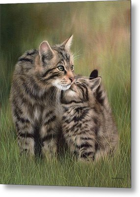 Scottish Wildcats Painting - In Support Of The Scottish Wildcat Haven Project Metal Print by Rachel Stribbling