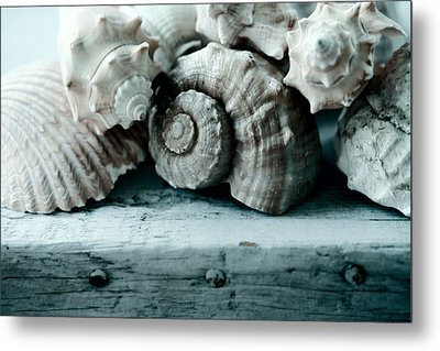 Sea Gifts Metal Print by Bonnie Bruno