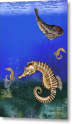 Sea Horse Metal Print by Karen Sheltrown