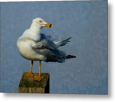Seagull Digital Painting Metal Print by Ernie Echols