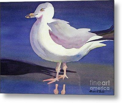 Seagull Metal Print by Shirin Shahram Badie