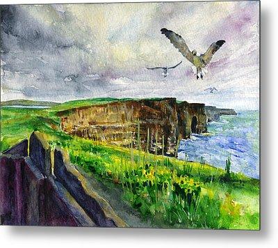 Seagulls At The Cliffs Of Moher Metal Print by John D Benson