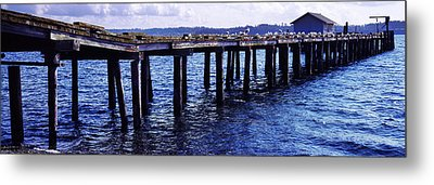 Seagulls On A Pier, Whidbey Island Metal Print by Panoramic Images