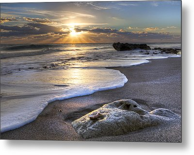 Seashell Metal Print by Debra and Dave Vanderlaan