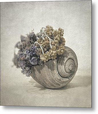 Seashell No.2 Metal Print by Taylan Soyturk