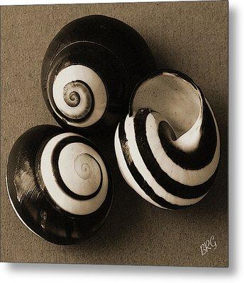 Seashells Spectacular No 27 Metal Print by Ben and Raisa Gertsberg