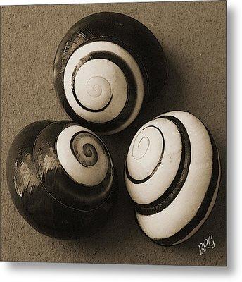 Seashells Spectacular No 28 Metal Print by Ben and Raisa Gertsberg