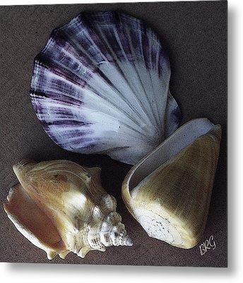 Seashells Spectacular No 30 Metal Print by Ben and Raisa Gertsberg