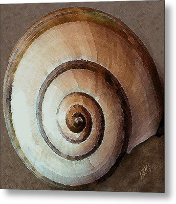 Seashells Spectacular No 34 Metal Print by Ben and Raisa Gertsberg