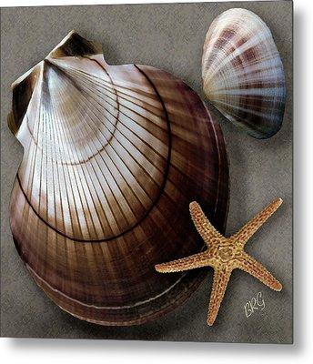 Seashells Spectacular No 38 Metal Print by Ben and Raisa Gertsberg
