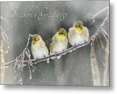 Season's Greetings Metal Print by Lori Deiter