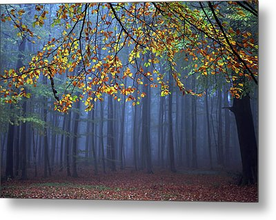 Seconds Before The Light Went Out Metal Print by Roeselien Raimond